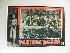M FOTOBUSTA ORIGINALE 35X50 PANTERA ROSSA ROBERT STACK TAYLOR MC GRAW