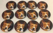 """Set Of 12""""Red Basenji Face"""" Fridge Magnets/ 12 Aimants A Frigo """"Basenji Rouge""""🐺"""