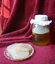ORGANIC Kombucha Mushroom Culture Scoby + Starter Tea - We have kefir too!