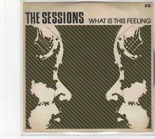 (FD211) The Sessions, What Is This Feeling - DJ CD