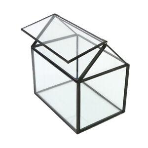 Glass Planter Box Tabletop Irregular Flower Succulent Terrarium Container Pots