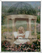 ZOLAN DAISY DREAMS INSPIRATIONAL FRAMED 8 X 10 PHOTO