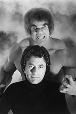 Lou Ferrigno Bill Bixby The Incredible Hulk 11x17 Mini Poster