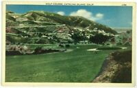 Golf Course Mountain View Catalina Island California CA Vintage Postcard