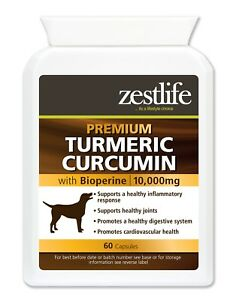 Zestlife Turmeric for Dogs 10,000mg 60 capsules for joints & digestive health.