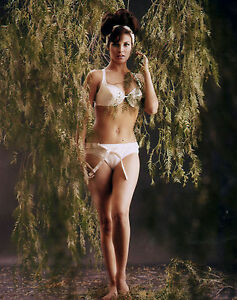 RAQUEL WELCH BUSTY SUPER SEXY BRA AND PANTIES IN THE 1960S