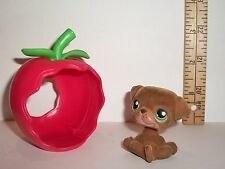 HASBRO LITTLEST PET SHOP FLOCKED DOG & APPLE HOUSE TOY ACCESSORY LOT PREOWNED