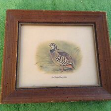 """5"""" x 6"""" wall picture of Red Legged Partridge Bird"""