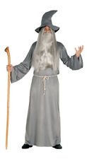 Adult Mens Grey Wizard Cloak Fancy Dress Costume Gandalf Dumbledore Outfit Party