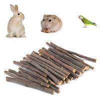 EE_ 20/40/60Pcs Pet Bunny Hamster Rabbit Chew Sticks Apple Tree Branch Wood Toys