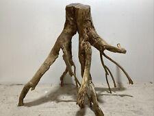 Talawa Wurzel ähnlich rote Moorwurzel, Moorkien,Mangrove #628 55x35x48cm