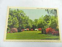 Vintage Postcard Alabama Linen Scene in Bellingrath Gardens Mobile