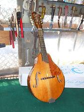 Rare Vintage 1950's Silvertone Mandolin String Instrument Tortouis Shell Maple