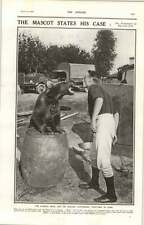 1919 The Russian Mascot Bear And His Master On Russian Soil