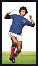 Golden Wonder World Cup All Stars (1978) Michel Platini (France) No. 13