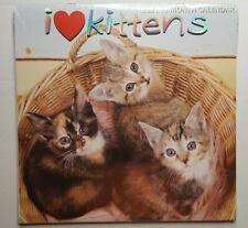 2021 Kitty Cat Kittens Pet 12 Month Wall Calendar 12 x 12