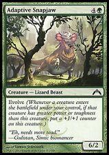 Greenside Watcher x4 NM Gatecrash MTG Magic Cards Green Common
