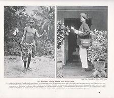 1897 Victorien Imprimé ~ Postman South Africa & Du Sud Inde Plus Livre Text