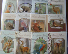 Pack of Male Female Wildlife 12 Birthday Cards Greetings Card Him Her #1