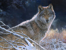 """Frosty Winter"" Bonnie Marris Limited Edition Giclee Canvas - American Wolf"