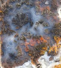 Mw: EAGLE ROCK PLUME AGATE -Prineville, Oregon- 2 Rough Slab