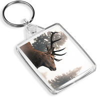 IP02 Majestic Stag Keyring Red Deer Scottish Highlands Mountains Gift #14361