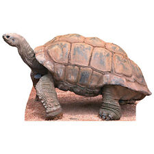 TORTOISE CARDBOARD CUTOUT Standee Standup Poster Prop Turtle FREE SHIPPING