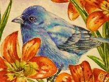 ACEO Indigo Blue Bunting bird Lily print of Painting