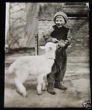 Glass Magic Lantern Slide YOUNG BOY FEEDING A BABY GOAT C1910  L74