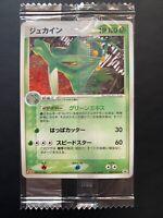 Pokemon Sceptile Meiji Chocolate Promo Japanese #063/PCG-P Sealed