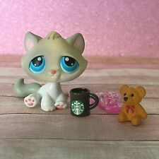 100% AUTHENTIC Littlest Pet Shop LPS #53 Grey Kitten Cat w Accessories