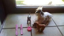 Barbie Hund Afgane Diana mit Welpen und Zubehör
