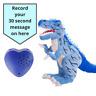 Dinosaure Tyrannosaurs - Enregistrable Ours -30 Seconde / Bébé Heartbeat