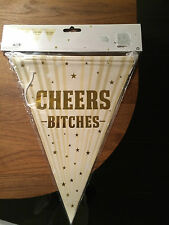CHEERS BITCHES BUNTING HEN PARTY BANNER BIRTHDAY FUNNY PARTIES 3 METRES