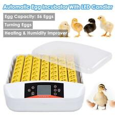Household Minitype 110V Egg Incubator 56 eggs with LED Light Chicken/Duck/Goose