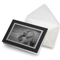 Greetings Card (Black) BW - Majestic Elephant Wild Animal  #42036