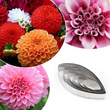 IG_ KF_ 6Pcs Dahlia Flower Cookies Cutter Mold Pastry Biscuit Cake Decor Mould F