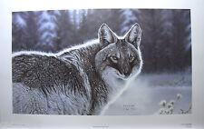"RANDY FEHR ""THE NEWCOMER"" Mint LTD art print Certificate COYOTE SNOW WINTER"