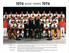 1974 CHICAGO BLACK HAWKS 8X10 TEAM PHOTO MARTIN HULL  HOCKEY ILLINOIS NHL HOF