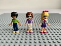 Lego Friends 41005 Heartlake High School Minifigures  Set, Teacher & Stephanie