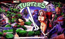 DATA EAST Teenage Mutant Ninja Turtles Pinball PLAYFIELD Light Mod BLUE