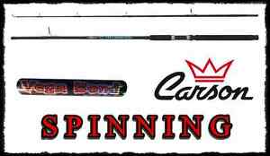 CANNA 2.40Mt az. 5/10g SPINNING CARSON BASS TROTA CAVEDANO MARE LAGO CUCCHIAINO