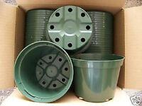 "5"" azalea green plastic pot greenhouse outdoor pots durable nursery  25 lots"