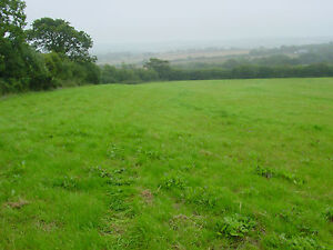 Plot of Land for sale in England ~  Hollacombe Devon