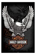 Harley Davidson Motorcycles Poster Eagle Logo