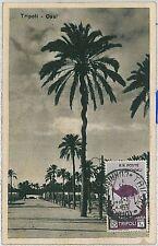 colonie Italiane - Storia Postale LIBIA : Cartolina da TRIPOLI viaggiata 1933