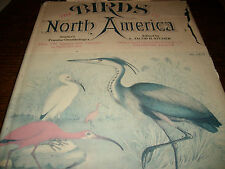 Birds of North America 1977 119 Bird Plate Images RARE SCARCE DJ Dust Jacket WOW