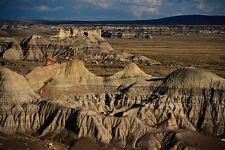 611069 lago prehistórico Cama Bosque Petrificado Parque Nacional A4 Foto Impresión