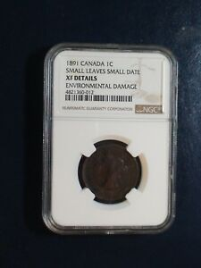 1891 Canada LARGE Cent NGC XF SMALL LEAVES SMALL DATE 1C Coin BUY IT NOW!