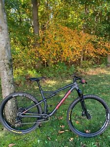 2017 SPECIALIZED EPIC Mountain Bike Size L Frame 29er Wheels Trail Race XC MTB